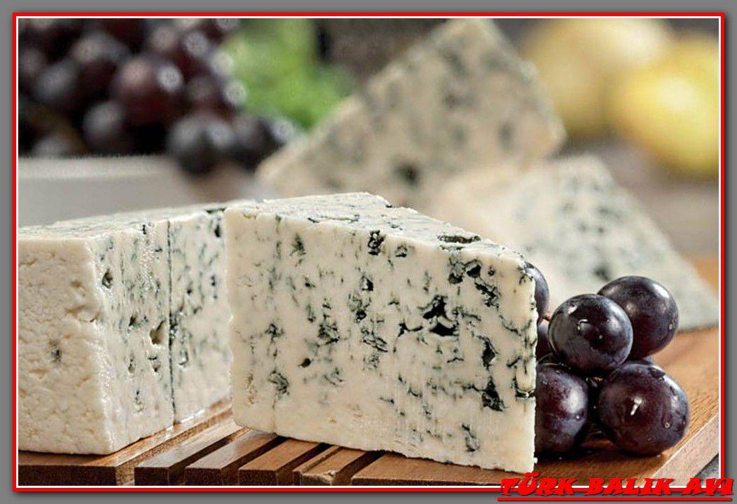 Как сделать сыр с плесенью в домашних условиях