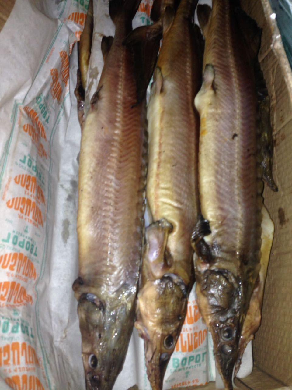 Рыбоводно-воспроизводственный комплекс раскат, ооо.