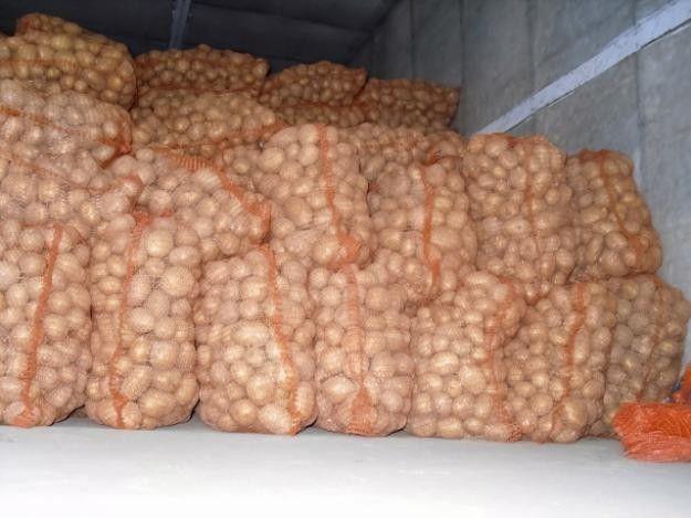 магазинов картофель оптом в екатеринбурге цены комнату длительный срок