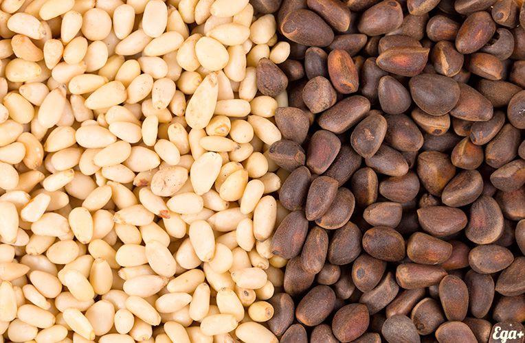 Очистить кедровый орех в домашних условиях 384