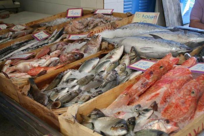 оптовые базы рыбы свежей в ростове на дону стены